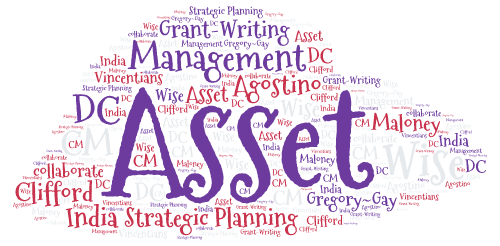 Wise Asset Management for Vincentians