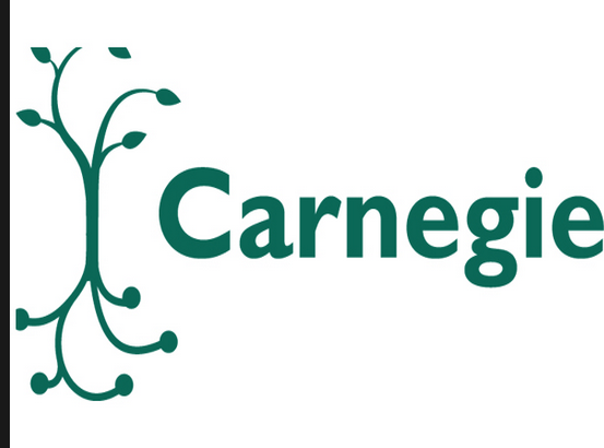 Carnegie Foundation cites 2 Vincentian Universities