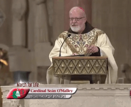 Cardinal O'Malley's state of the pro-life movement address