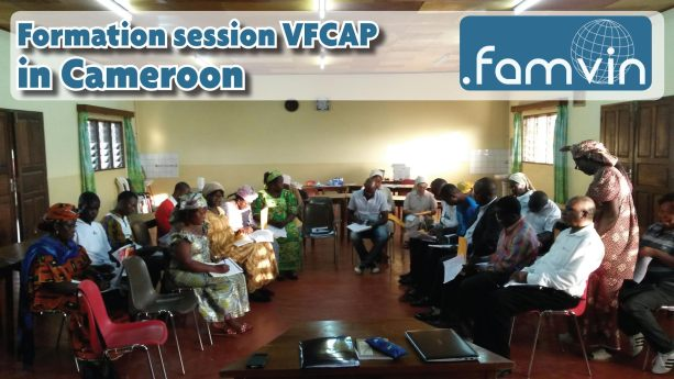VFCAP Cameroon – Fourth Day
