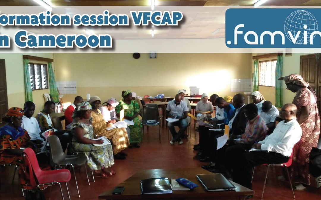 VFCAP CAMEROON – the first 3 days