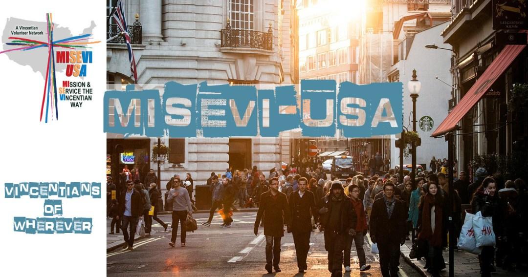 MISEVI-USA-FB