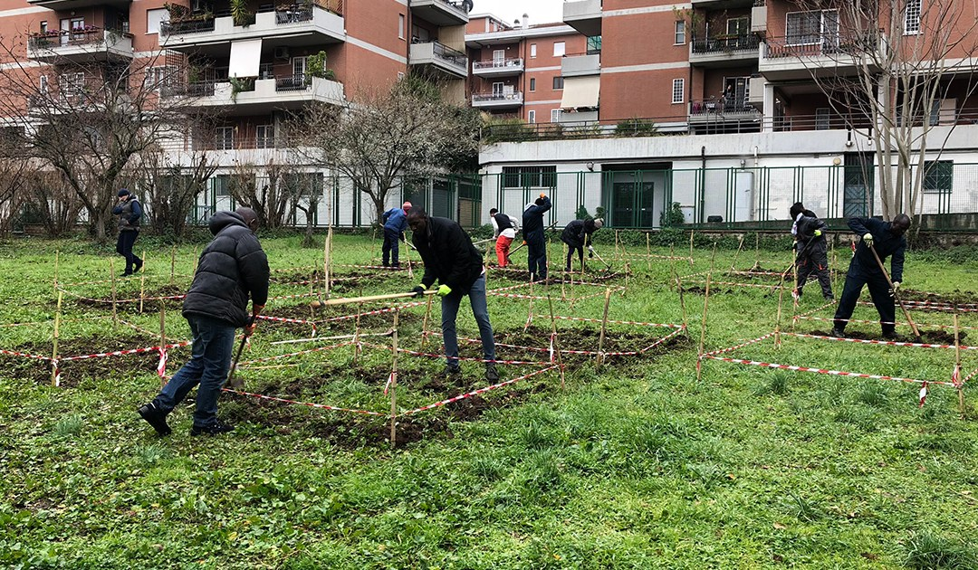 We Cultivate Integration: Flowers and Fruits in the Land of Asylum