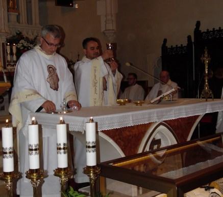 peregrination of st. vincent vol 3 18
