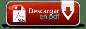 DESCARGAR EN PDF