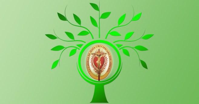 Para renovarla Compañía de las Hijas de la Caridad, renovar el Espíritu