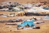 Tutsi, ofiary Hutu