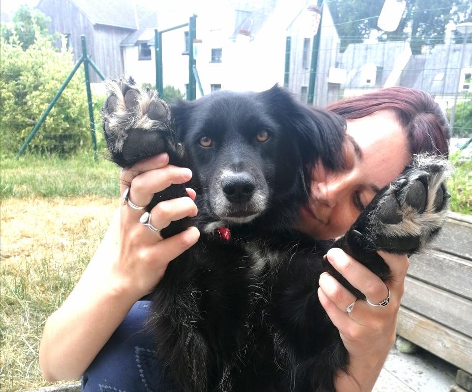 Chaleurs et canicule : 10 astuces pour rafraîchir mon chien ou chat