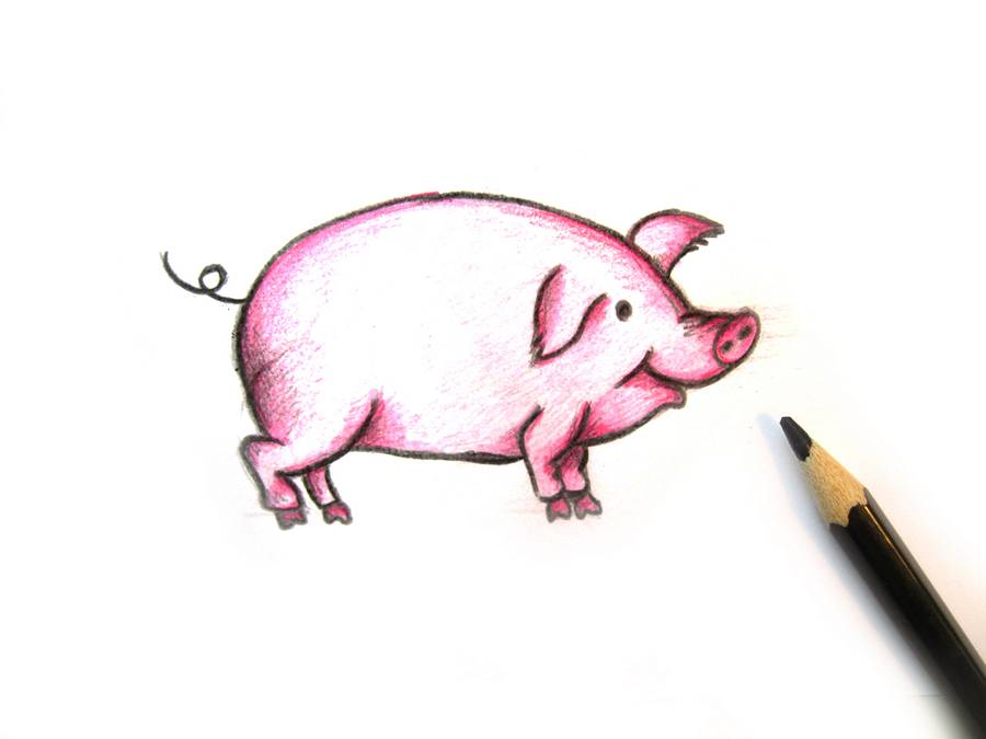 Рисунки хрюшек прикольные карандашом