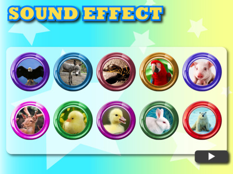 Animals Cute Sounds HD iPad App Review