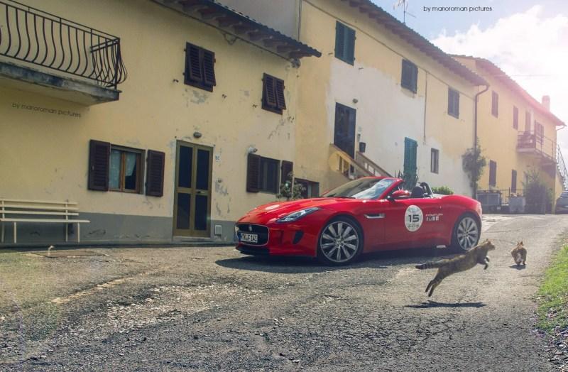 2013 - Jaguar F-Type - Fanaticar Magazin