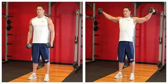 5 Exercícios para Ombro - Músculo Deltoide
