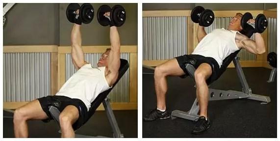 exercicios para ganhar massa muscular