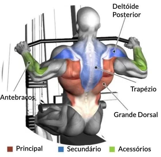 Exercícios para as costas - Puxada Sentado