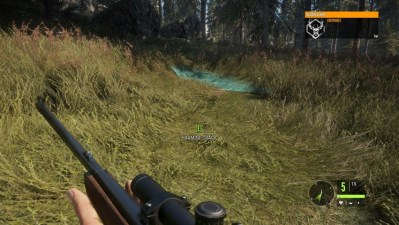 Call of the Wild Review