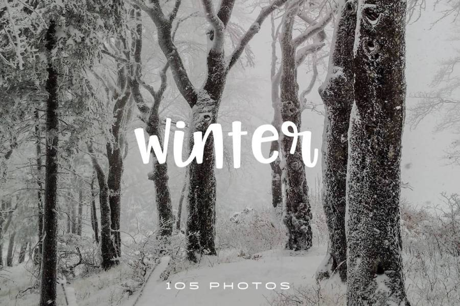 These beautiful winter photos can easily improve the look of your website, blog or social media page and attract more clicks on your posts.