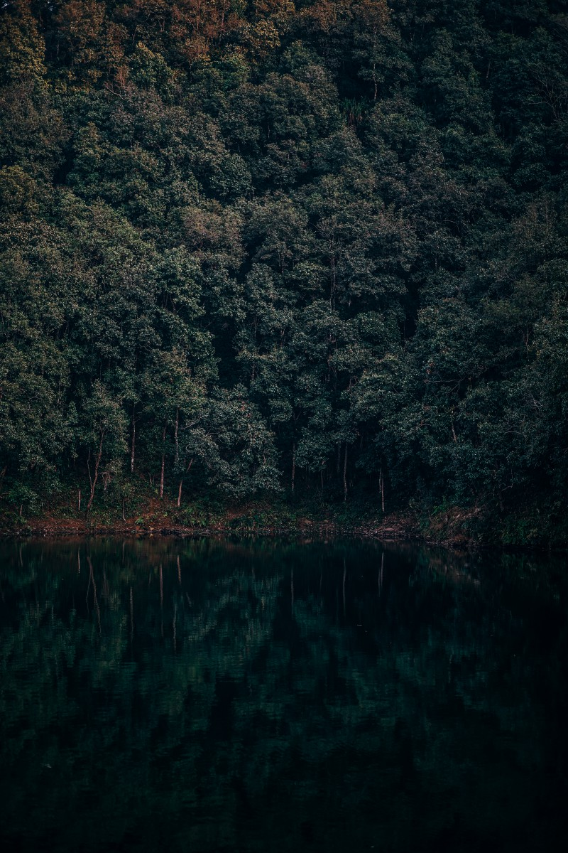 Lake-Reflections