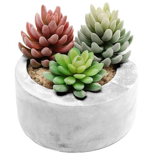 Gray-Cement-Modern-Circular-Succulent-Pot-Planter-300x300