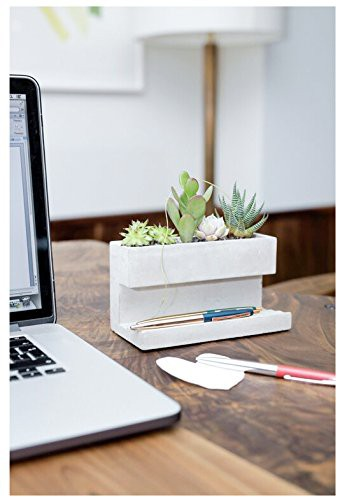 Kikkerland-Concrete-Desktop-Planter-LARGE