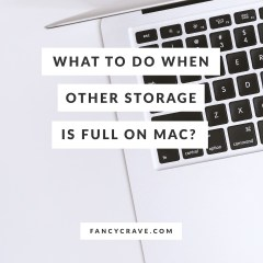 What to Do When Other Storage is Full On Mac