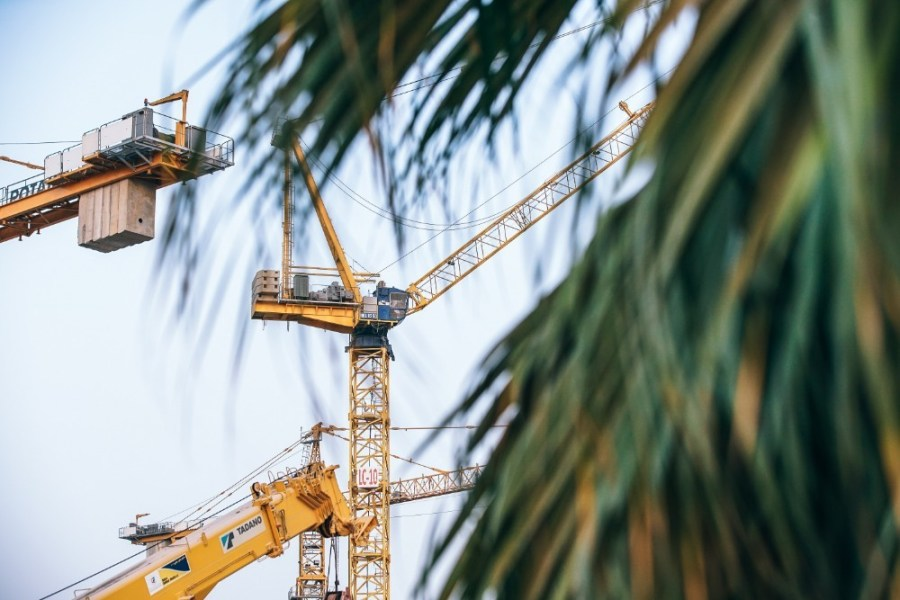 Crane-Work-Photographed-through-Green-Long-Leaves