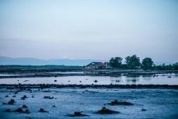 Barn-on-a-Salt-Field-in-Kep-Cambodia