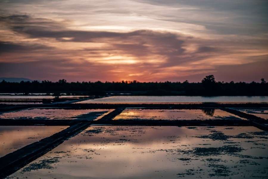 Beautiful-Salt-Fields-in-Cambodia-during-Sunset