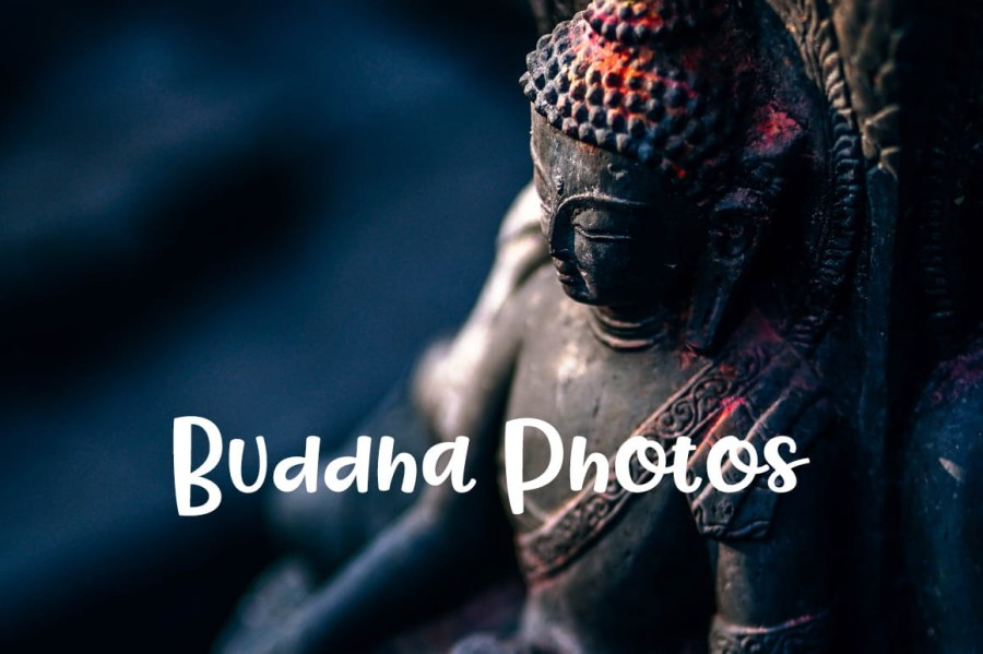 Buddha-Photos