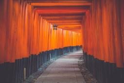 The-Amazing-Torii-Gates-at-the-Fushimi-Inari-Taisha