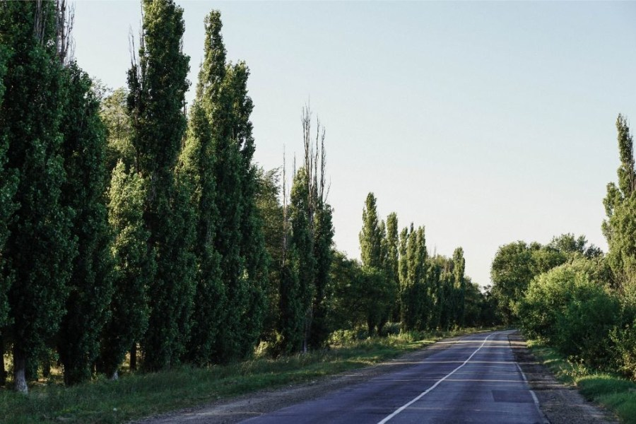 Country-Side-Road-in-Dzhankoy-Crimea
