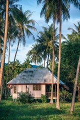 Cute-Island-House-Surrounded-by-Tall-Palm-Trees
