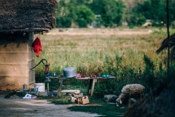 Goat-Eating-Grass-Next-to-Water-Pump