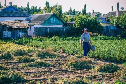 Old-Man-Carrying-a-Bucket-in-his-Garden