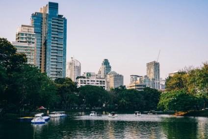 Paddle-Boats-in-the-Lumphini-Park-Lake-in-Bangkok
