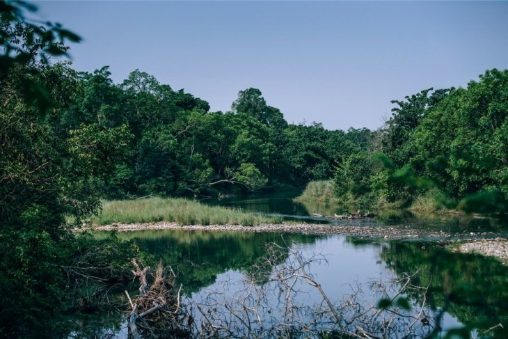 Small-Lake-at-the-Bardiya-National-Park-in-Nepal