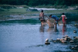 Three-Nepali-Women-Catching-Fish-in-a-Small-River