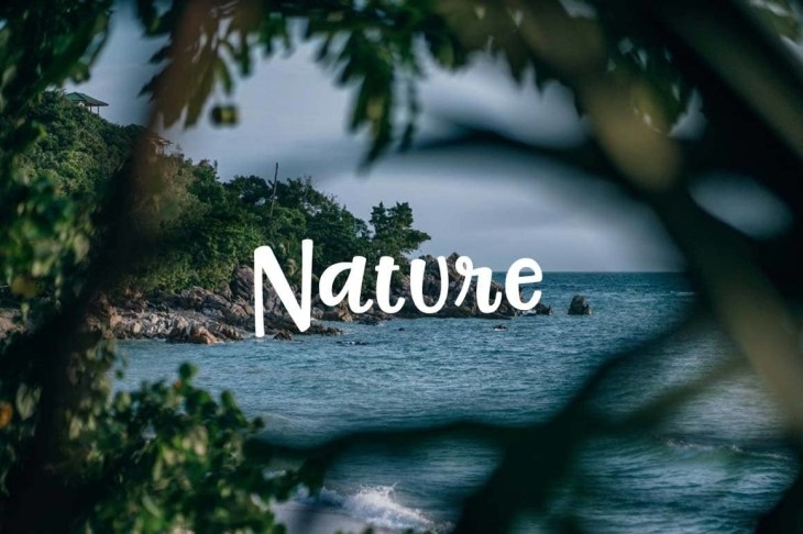 Free-Nature-Pictures-min