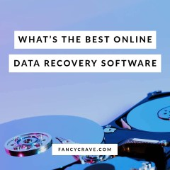 Online Data Recovery Software