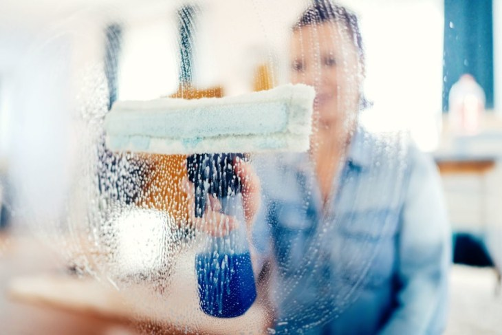 young-woman-using-window-cleaner-and-doing-chores-PK9F8V6