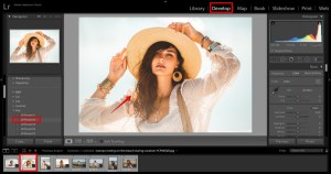 edit photos to make a collage in lightroom using own design