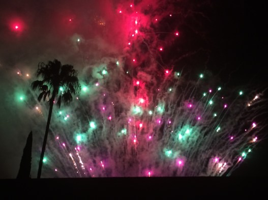 7.5.15 fireworks5