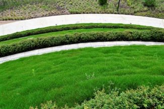 Essential Landscaping Maintenance tips