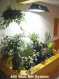 HID indoor grow lights