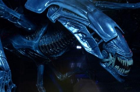 alienqueen07