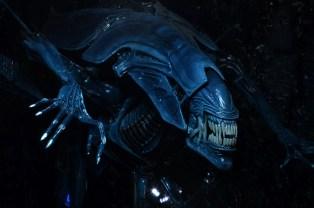 alienqueen11