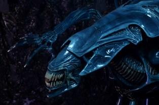 alienqueen12