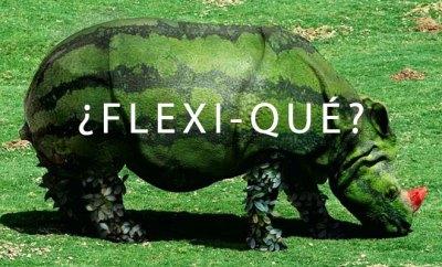 Flexivegetariano ¿es una opción o una confusión?