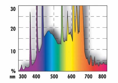 水族館ランプT5のスペクトル