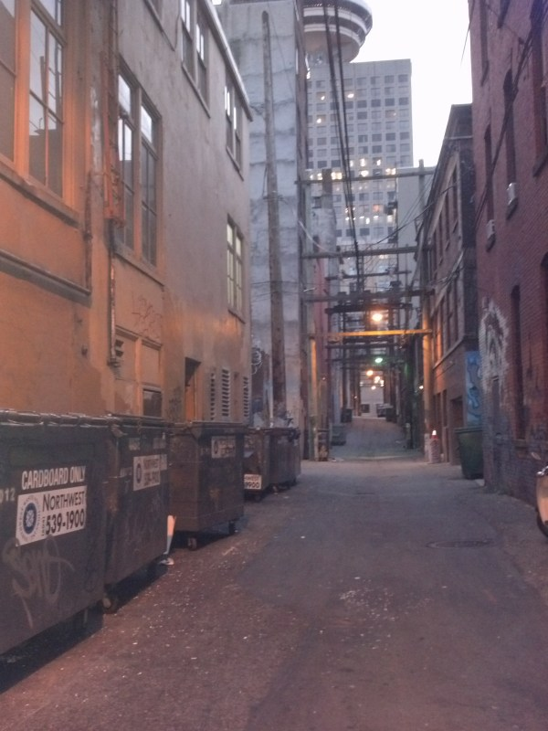 No, it's not JUST an alley...