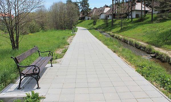 【自律神經健康】散步、走路─對自律神經最好的運動